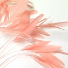 Coral Pink Stripped Coques